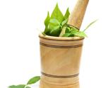 Olive Leaf - Φύλλα ελιάς